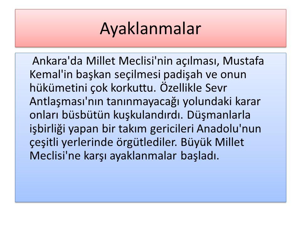 Ayaklanmalar Ankara da Millet Meclisi nin açılması, Mustafa Kemal in başkan seçilmesi padişah ve onun hükümetini çok korkuttu.