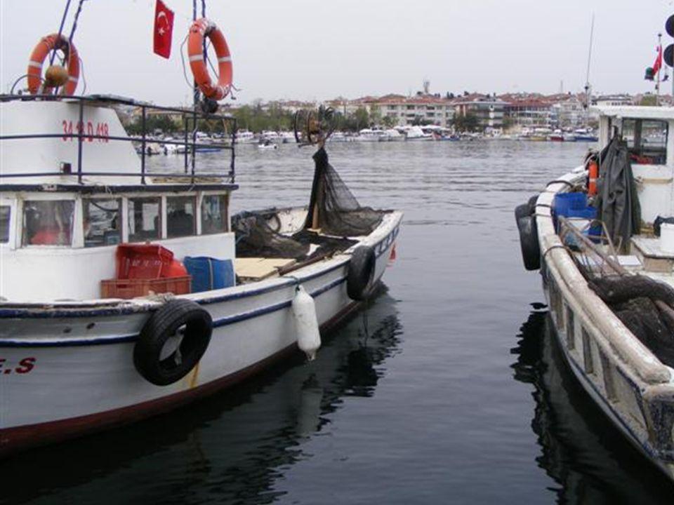 Haftasonu yürüyüşleri için İstanbul'un bir çok yerinden gelen insanlar .