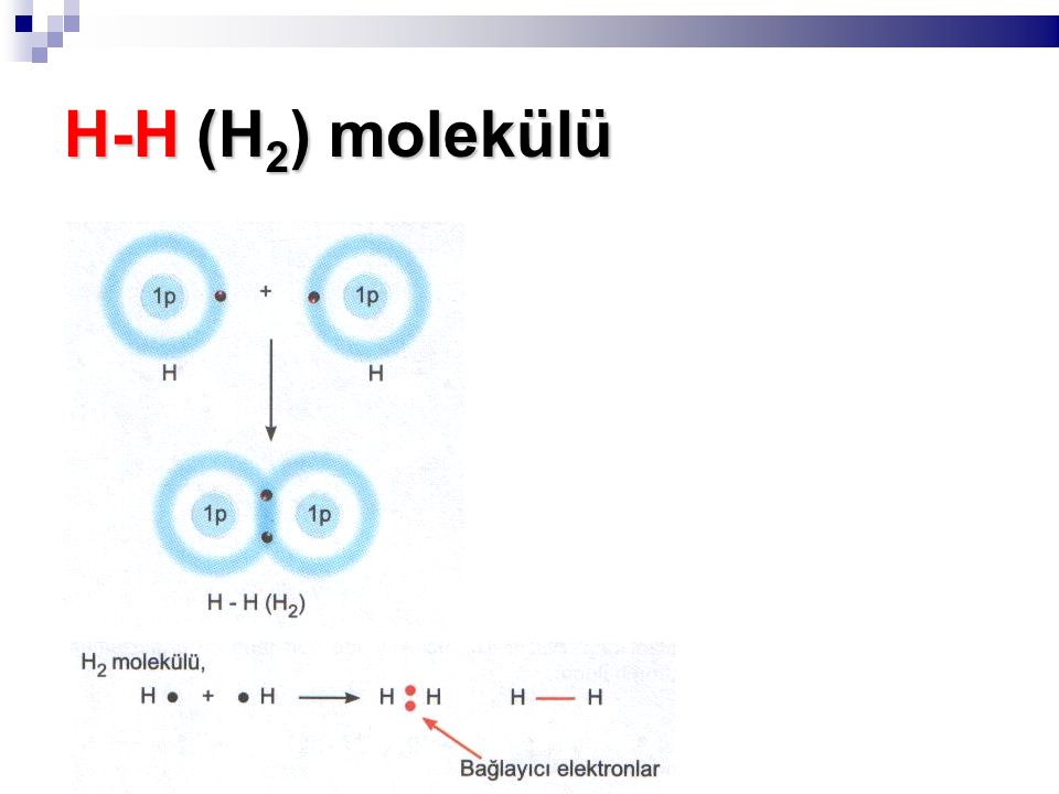 H-H (H 2 ) molekülü