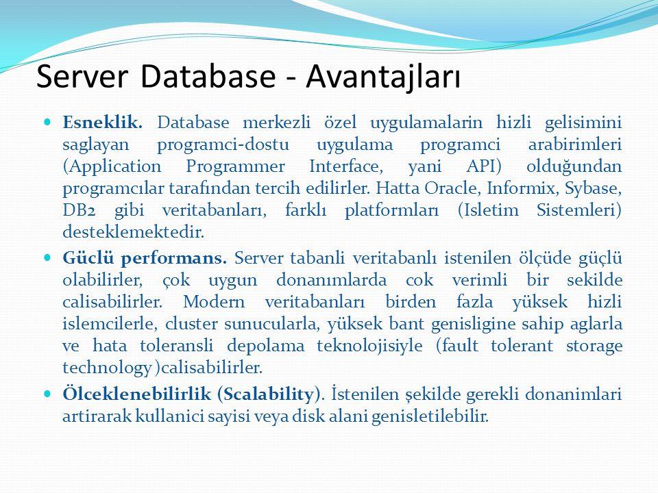 Server Database - Avantajları Esneklik. Database merkezli özel uygulamalarin hizli gelisimini saglayan programci-dostu uygulama programci arabirimleri