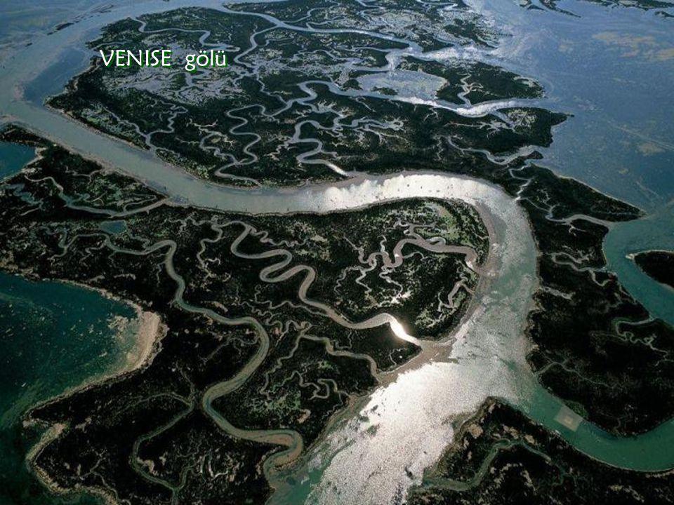 VENISE gölü VENISE gölü