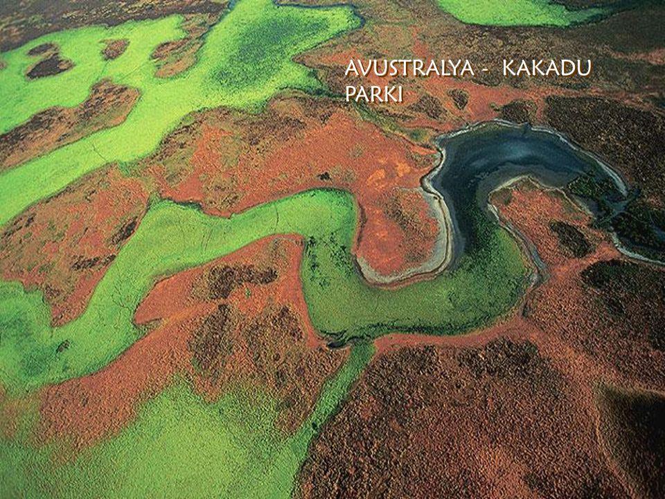 WHITE ISLAND – Eski krater WHITE ISLAND – Eski krater