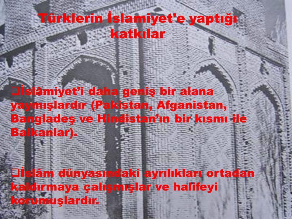 Türklerin İslamiyet e yaptığı katkılar  İslâmiyet'i daha geniş bir alana yaymışlardır (Pakistan, Afganistan, Bangladeş ve Hindistan'ın bir kısmı ile Balkanlar).