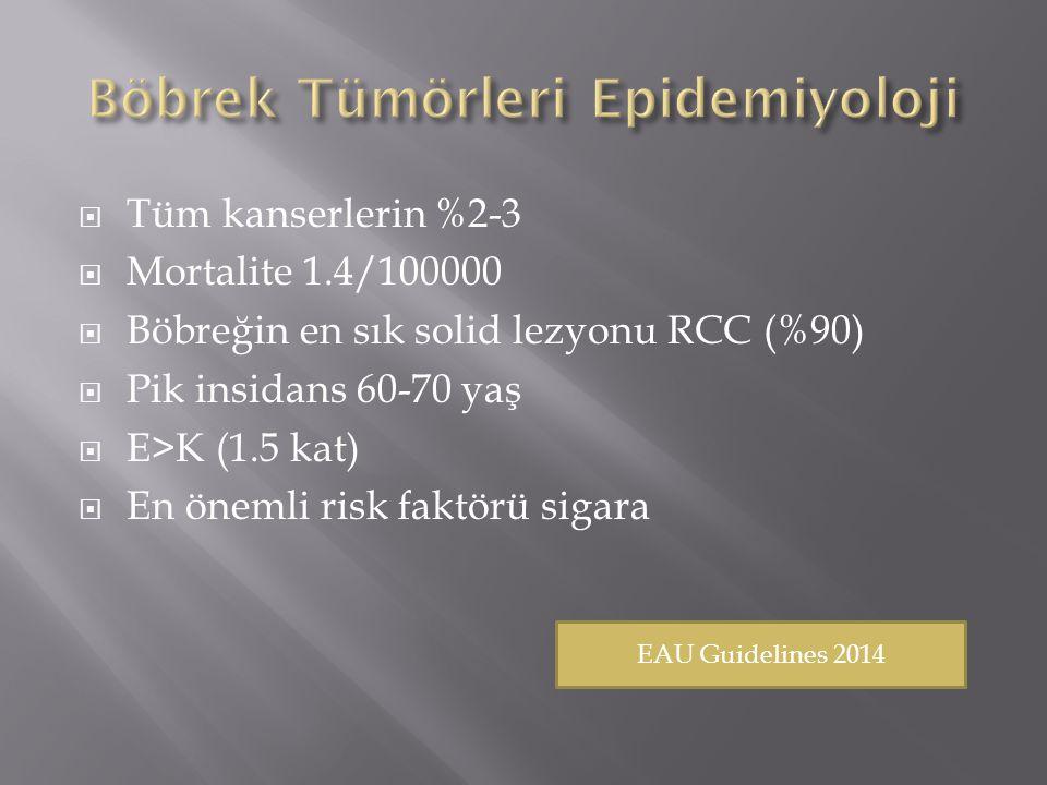  Tüm kanserlerin %2-3  Mortalite 1.4/100000  Böbreğin en sık solid lezyonu RCC (%90)  Pik insidans 60-70 yaş  E>K (1.5 kat)  En önemli risk faktörü sigara EAU Guidelines 2014