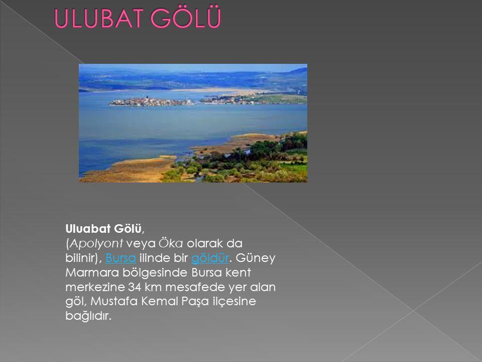 Uluabat Gölü, (Apolyont veya Öka olarak da bilinir), Bursa ilinde bir göldür. Güney Marmara bölgesinde Bursa kent merkezine 34 km mesafede yer alan gö