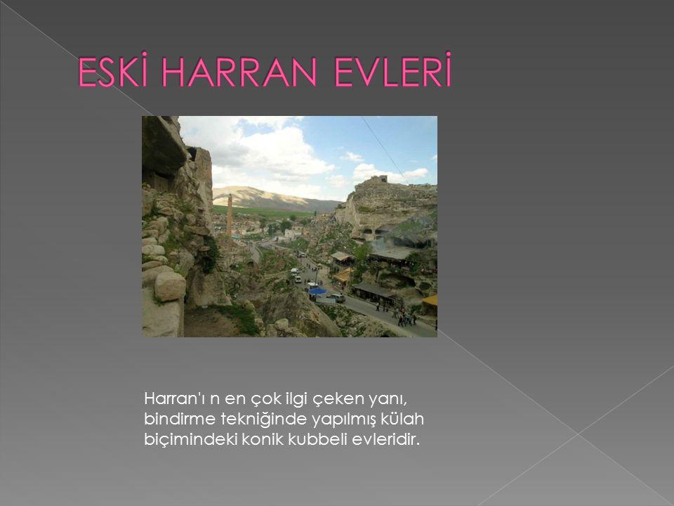 Harran'ı n en çok ilgi çeken yanı, bindirme tekniğinde yapılmış külah biçimindeki konik kubbeli evleridir.