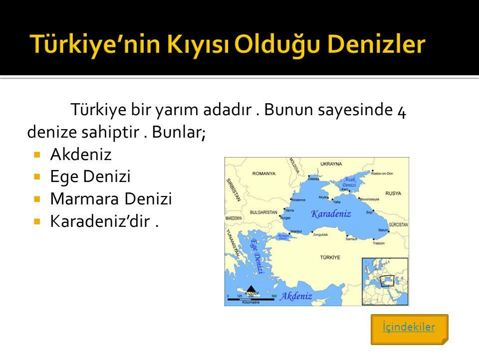 Türkiye bir yarım adadır. Bunun sayesinde 4 denize sahiptir. Bunlar;  Akdeniz  Ege Denizi  Marmara Denizi  Karadeniz'dir. İçindekiler