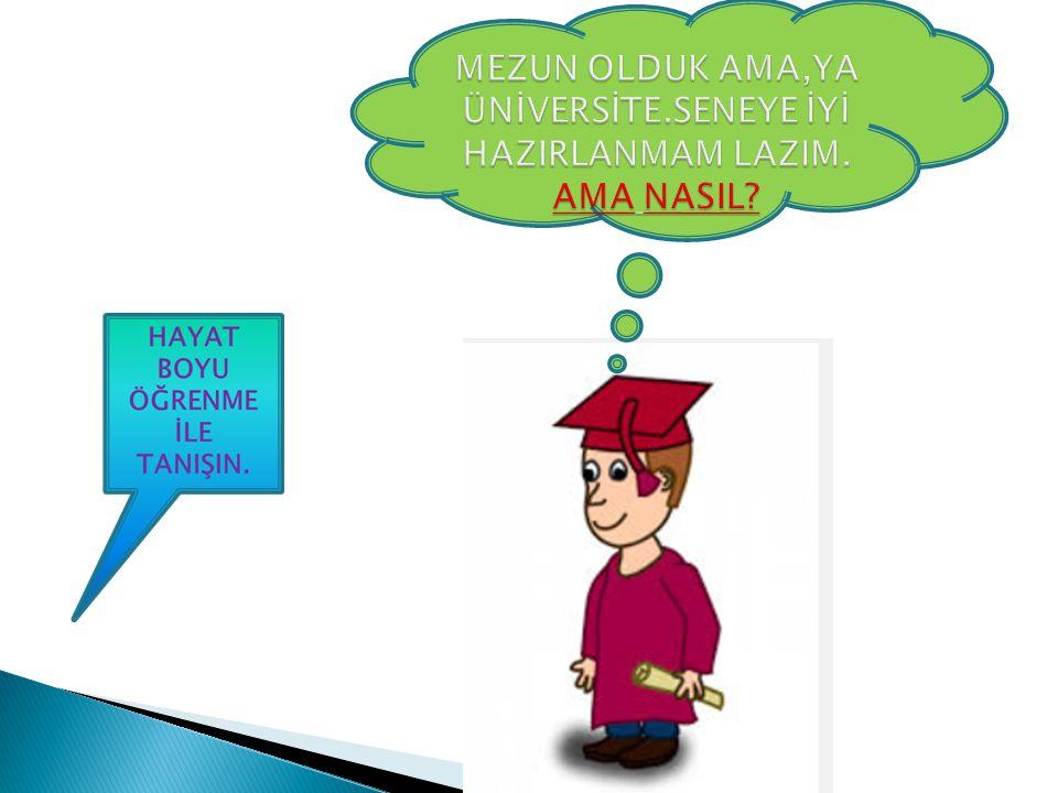 AÇIK LİSE