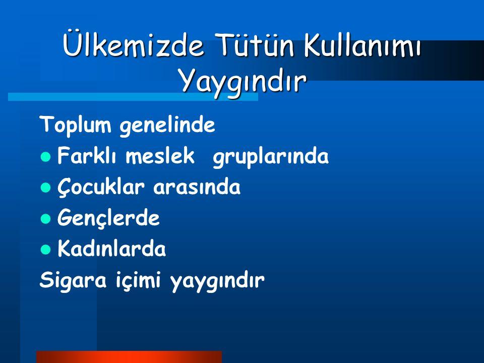 Türkiye'de 17 milyon kişi sigara içmektedir
