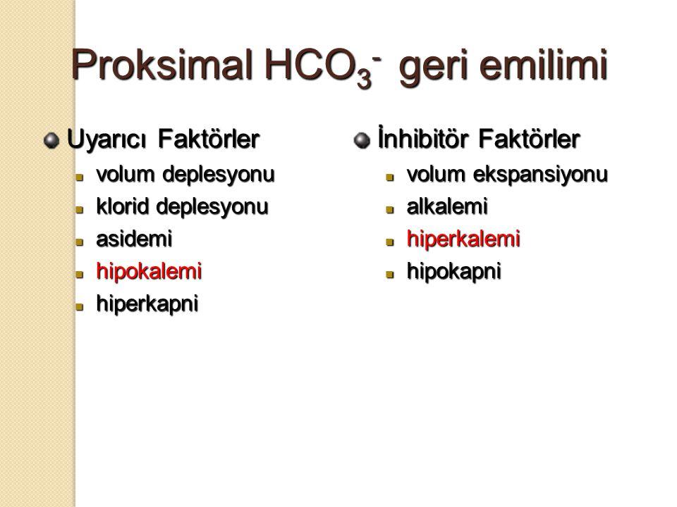 Proksimal HCO 3 - geri emilimi Uyarıcı Faktörler volum deplesyonu volum deplesyonu klorid deplesyonu klorid deplesyonu asidemi asidemi hipokalemi hipo