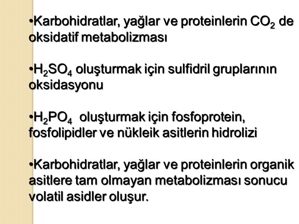 Karbohidratlar, yağlar ve proteinlerin CO 2 de oksidatif metabolizmasıKarbohidratlar, yağlar ve proteinlerin CO 2 de oksidatif metabolizması H 2 SO 4