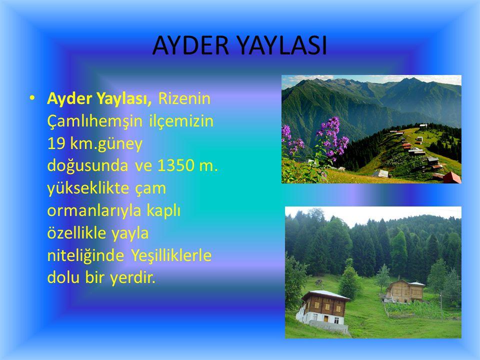 AYDER YAYLASI Ayder Yaylası, Rizenin Çamlıhemşin ilçemizin 19 km.güney doğusunda ve 1350 m.