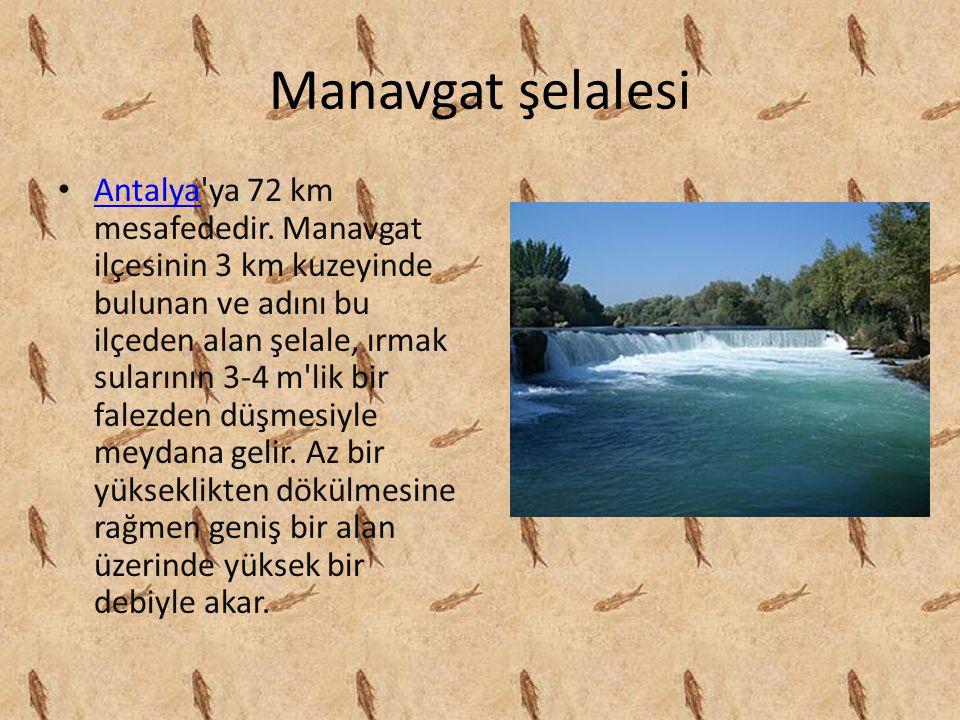 Manavgat şelalesi Antalya'ya 72 km mesafededir. Manavgat ilçesinin 3 km kuzeyinde bulunan ve adını bu ilçeden alan şelale, ırmak sularının 3-4 m'lik b