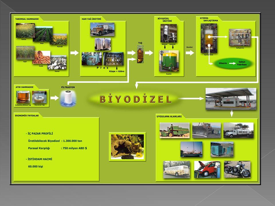 Biyokütle yakıt olarak kullanılabilen ağaç, bitki, gübre ve atıklar gibi biyolojik malzemelerden elde edilen enerji anlamında kullanılmakta olup;  yenilenebilir,  her yerde yetiştirilebilen,  sosyo-ekonomik gelişme sağlayan,  çevre dostu,  elektrik üretilebilen,  taşıtlar için yakıt elde edilebilen stratejik bir enerji kaynağıdır.