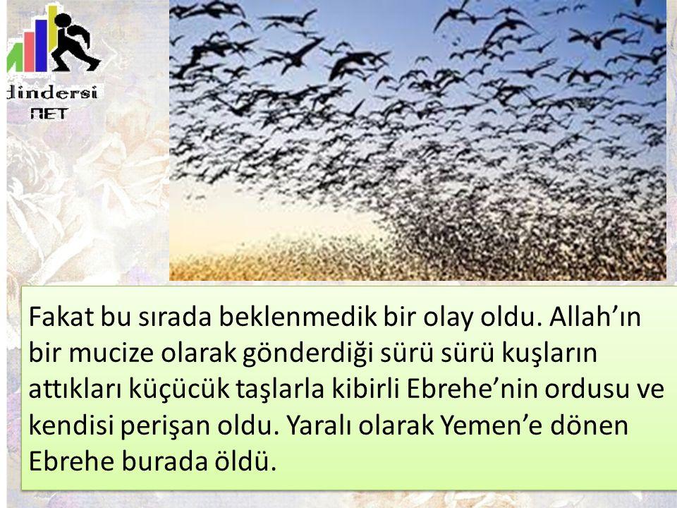 Fakat bu sırada beklenmedik bir olay oldu. Allah'ın bir mucize olarak gönderdiği sürü sürü kuşların attıkları küçücük taşlarla kibirli Ebrehe'nin ordu
