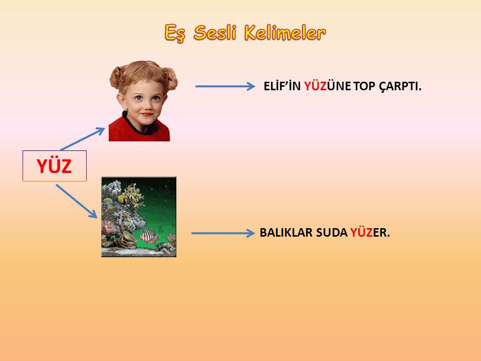 YÜZ ELİF'İN YÜZÜNE TOP ÇARPTI. BALIKLAR SUDA YÜZER.