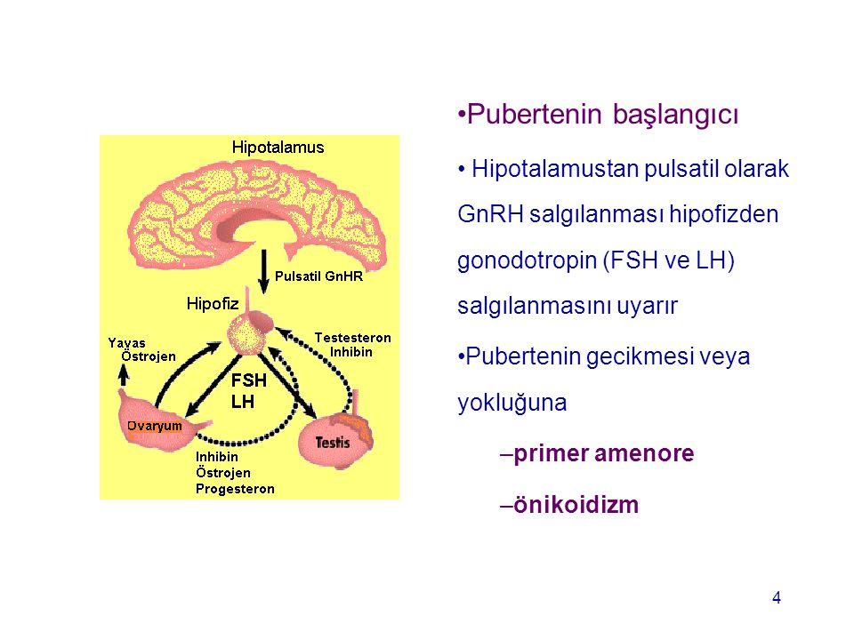 Pubertenin başlangıcı Hipotalamustan pulsatil olarak GnRH salgılanması hipofizden gonodotropin (FSH ve LH) salgılanmasını uyarır Pubertenin gecikmesi
