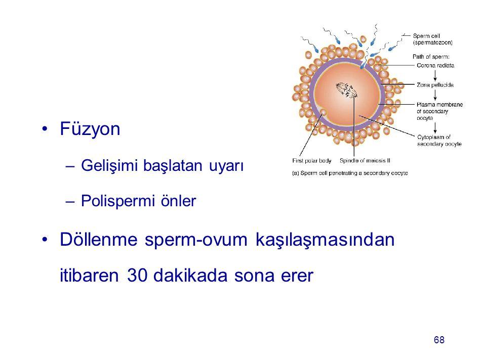 Füzyon –Gelişimi başlatan uyarı –Polispermi önler Döllenme sperm-ovum kaşılaşmasından itibaren 30 dakikada sona erer 68