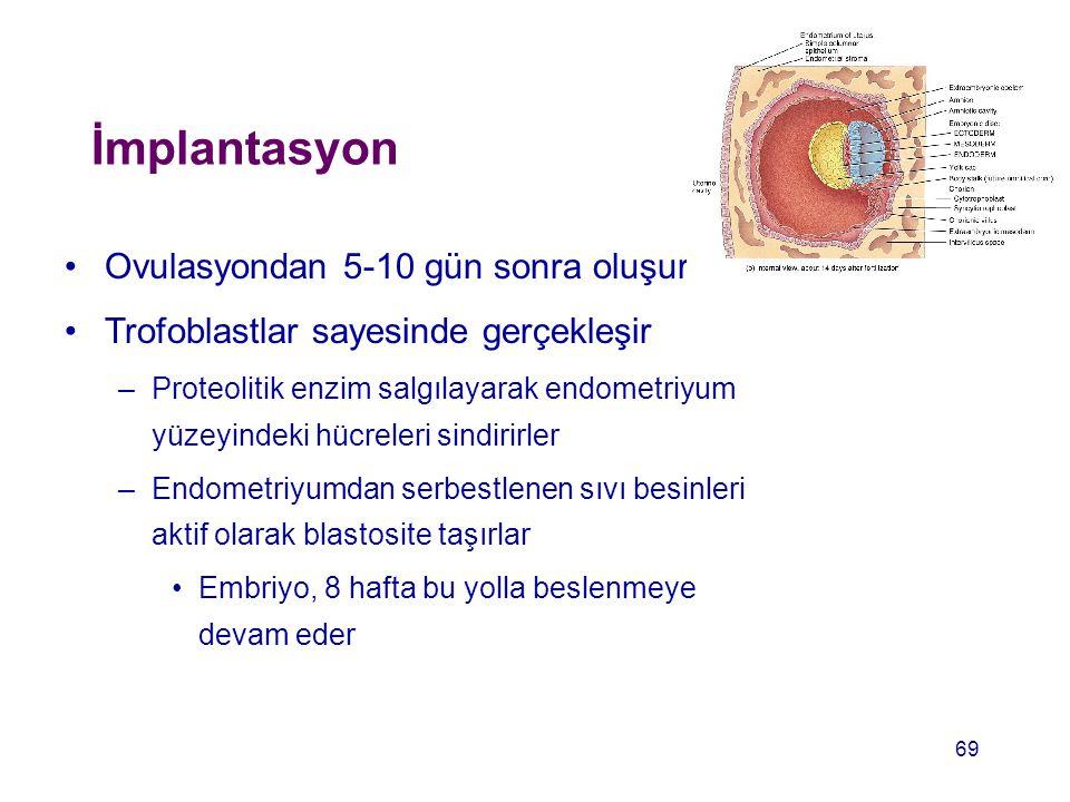 İmplantasyon Ovulasyondan 5-10 gün sonra oluşur Trofoblastlar sayesinde gerçekleşir –Proteolitik enzim salgılayarak endometriyum yüzeyindeki hücreleri