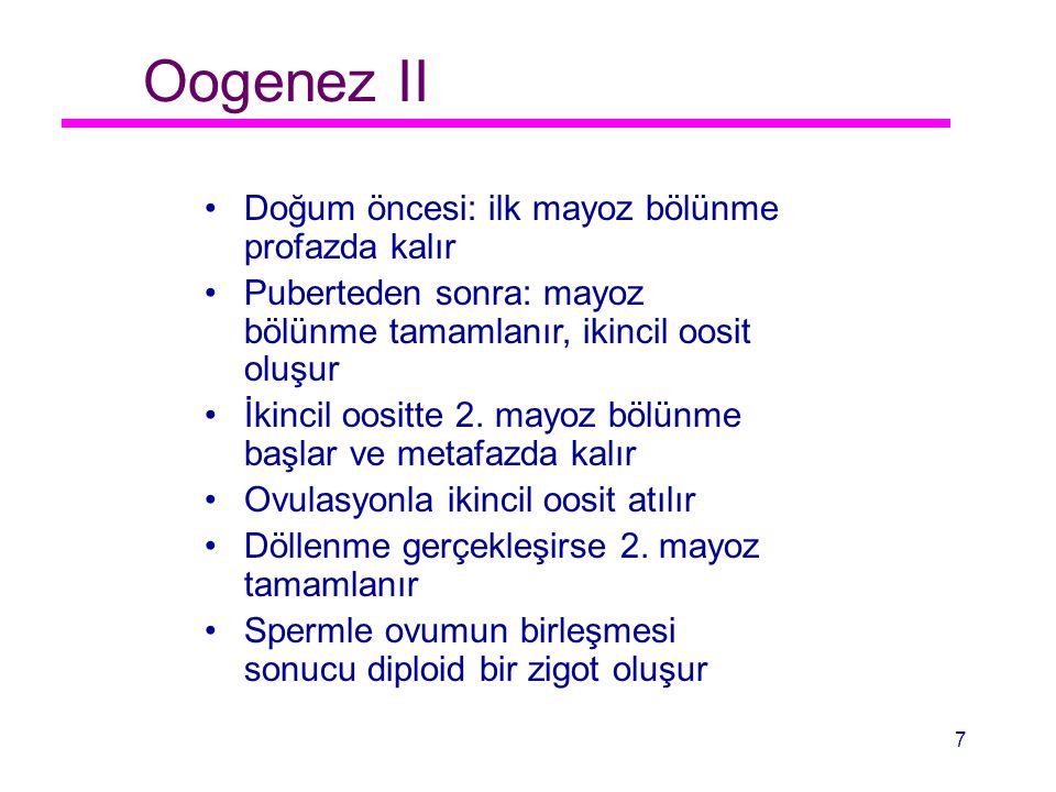Oogenez II Doğum öncesi: ilk mayoz bölünme profazda kalır Puberteden sonra: mayoz bölünme tamamlanır, ikincil oosit oluşur İkincil oositte 2. mayoz bö