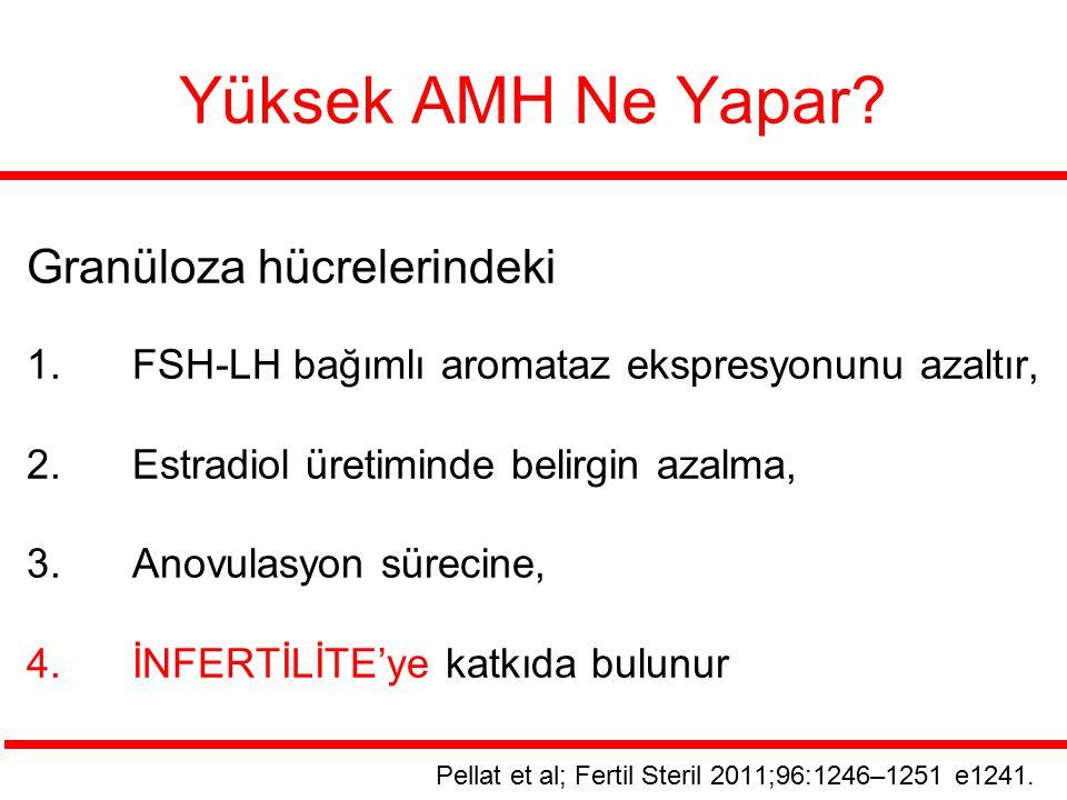 Yüksek AMH Ne Yapar? Granüloza hücrelerindeki 1.FSH-LH bağımlı aromataz ekspresyonunu azaltır, 2.Estradiol üretiminde belirgin azalma, 3.Anovulasyon s
