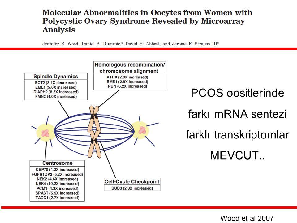 PCOS oositlerinde farkı mRNA sentezi farklı transkriptomlar MEVCUT.. Wood et al 2007