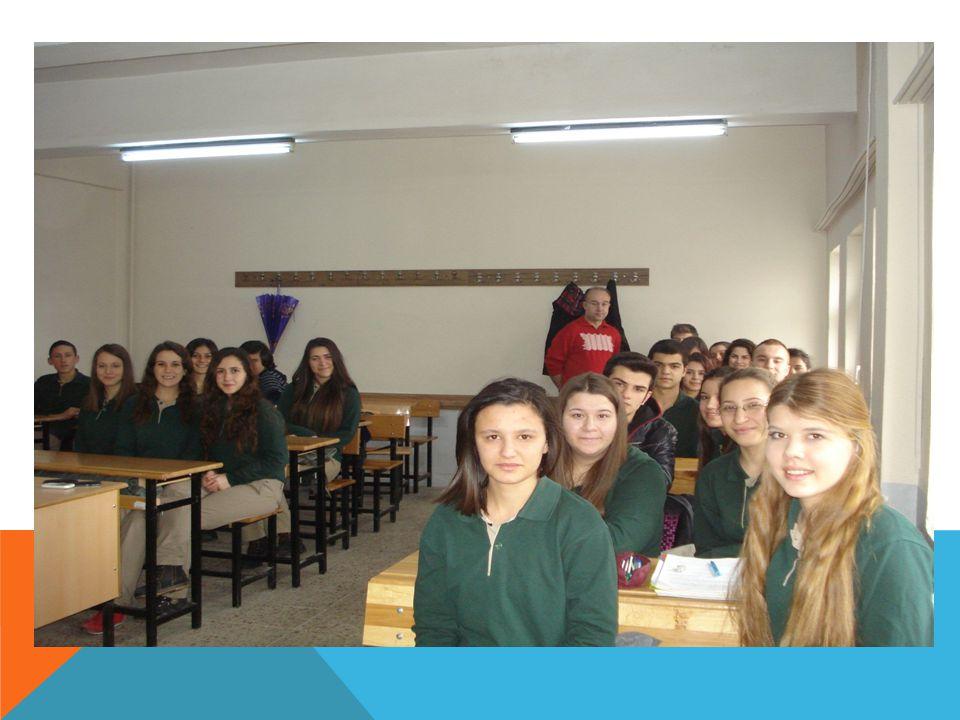 TÜM ALANLAR IÇIN MEZUNİYET SONRASI Öğrencilere programın sonunda seçtiği ALANA /DALA yönelik olarak; 1.