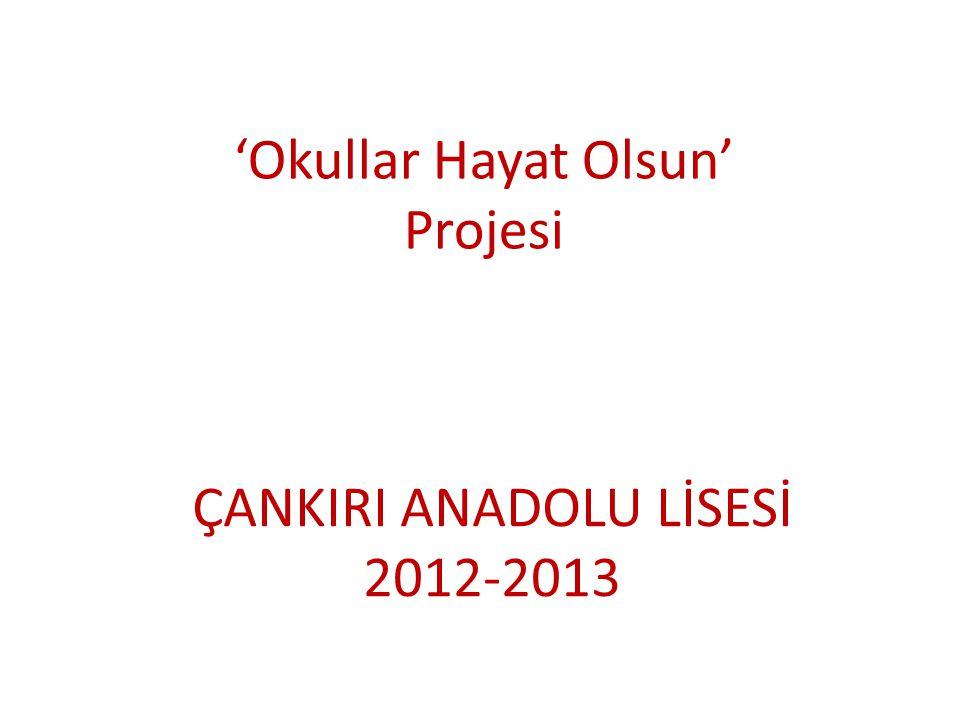'Okullar Hayat Olsun' Projesi ÇANKIRI ANADOLU LİSESİ 2012-2013