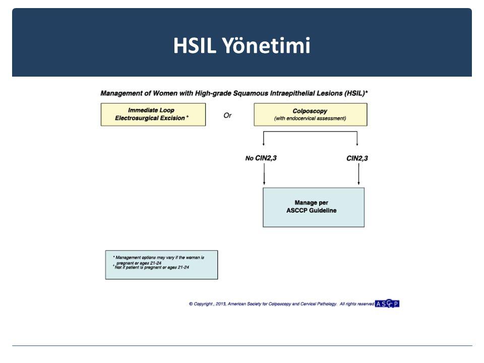HSIL Yönetimi