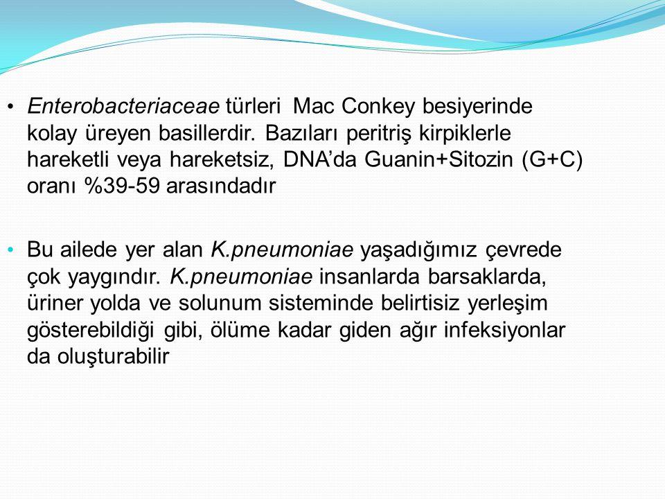Enterobacteriaceae türleri Mac Conkey besiyerinde kolay üreyen basillerdir. Bazıları peritriş kirpiklerle hareketli veya hareketsiz, DNA'da Guanin+Sit