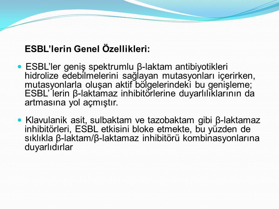ESBL'lerin Genel Özellikleri: ESBL'ler geniş spektrumlu β-laktam antibiyotikleri hidrolize edebilmelerini sağlayan mutasyonları içerirken, mutasyonlarla oluşan aktif bölgelerindeki bu genişleme; ESBL' lerin β-laktamaz inhibitörlerine duyarlılıklarının da artmasına yol açmıştır.