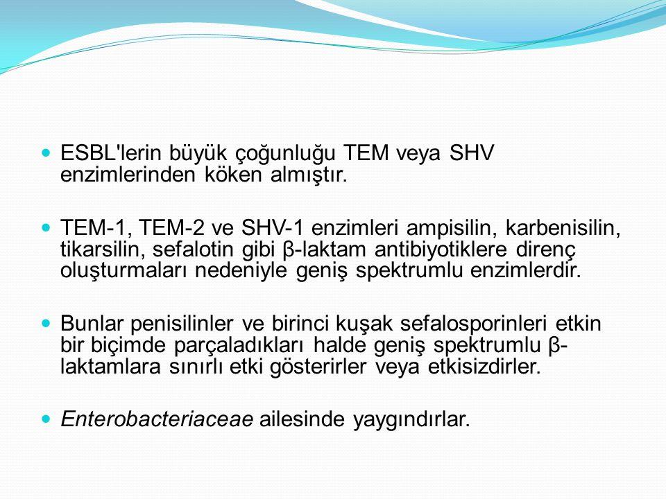 ESBL'lerin büyük çoğunluğu TEM veya SHV enzimlerinden köken almıştır. TEM-1, TEM-2 ve SHV-1 enzimleri ampisilin, karbenisilin, tikarsilin, sefalotin g