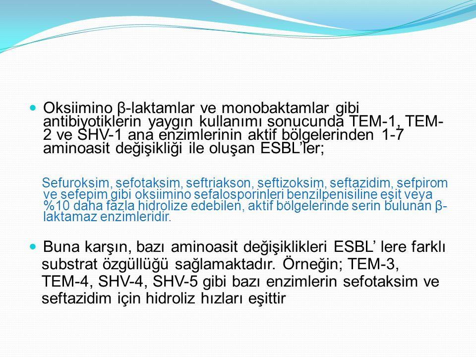 Oksiimino β-laktamlar ve monobaktamlar gibi antibiyotiklerin yaygın kullanımı sonucunda TEM-1, TEM- 2 ve SHV-1 ana enzimlerinin aktif bölgelerinden 1-7 aminoasit değişikliği ile oluşan ESBL'ler; Sefuroksim, sefotaksim, seftriakson, seftizoksim, seftazidim, sefpirom ve sefepim gibi oksiimino sefalosporinleri benzilpenisiline eşit veya %10 daha fazla hidrolize edebilen, aktif bölgelerinde serin bulunan β- laktamaz enzimleridir.