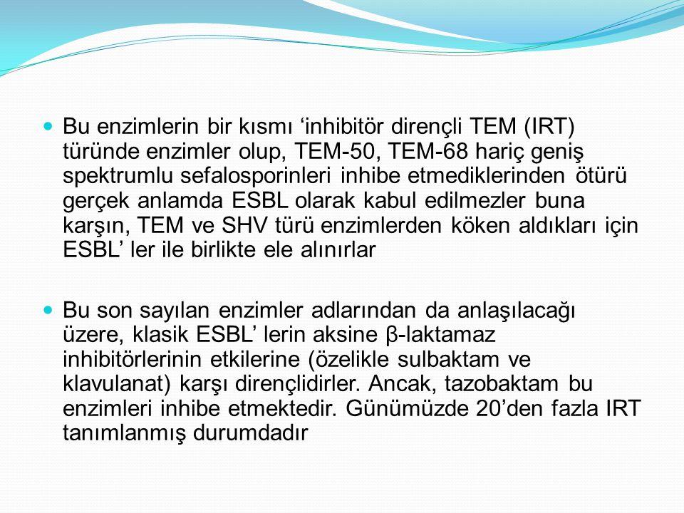 Bu enzimlerin bir kısmı 'inhibitör dirençli TEM (IRT) türünde enzimler olup, TEM-50, TEM-68 hariç geniş spektrumlu sefalosporinleri inhibe etmediklerinden ötürü gerçek anlamda ESBL olarak kabul edilmezler buna karşın, TEM ve SHV türü enzimlerden köken aldıkları için ESBL' ler ile birlikte ele alınırlar Bu son sayılan enzimler adlarından da anlaşılacağı üzere, klasik ESBL' lerin aksine β-laktamaz inhibitörlerinin etkilerine (özelikle sulbaktam ve klavulanat) karşı dirençlidirler.