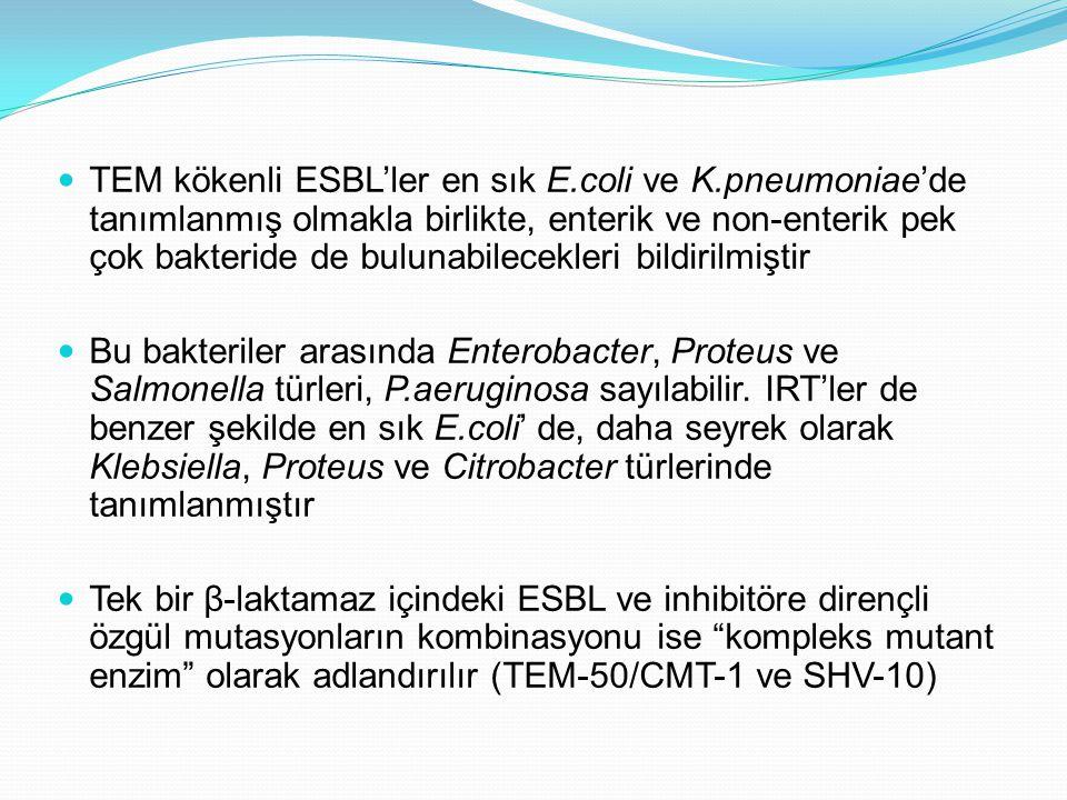 TEM kökenli ESBL'ler en sık E.coli ve K.pneumoniae'de tanımlanmış olmakla birlikte, enterik ve non-enterik pek çok bakteride de bulunabilecekleri bildirilmiştir Bu bakteriler arasında Enterobacter, Proteus ve Salmonella türleri, P.aeruginosa sayılabilir.