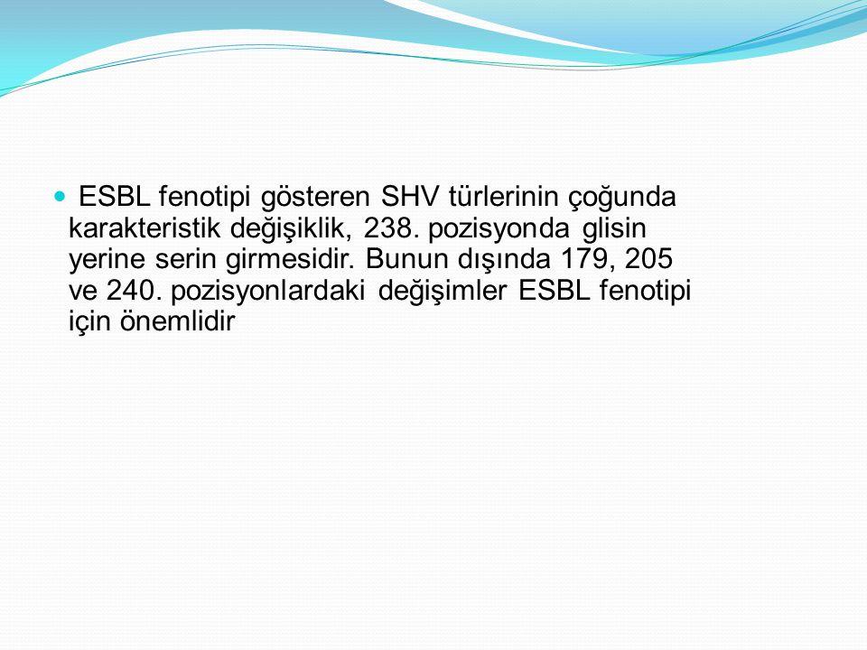 ESBL fenotipi gösteren SHV türlerinin çoğunda karakteristik değişiklik, 238. pozisyonda glisin yerine serin girmesidir. Bunun dışında 179, 205 ve 240.