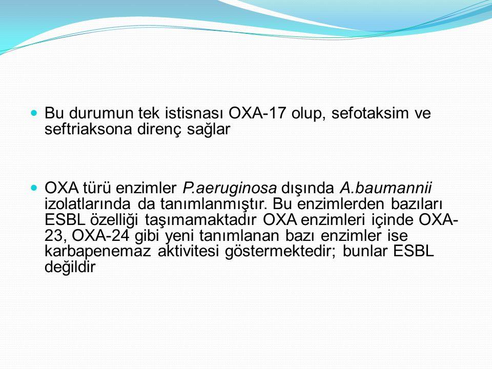 Bu durumun tek istisnası OXA-17 olup, sefotaksim ve seftriaksona direnç sağlar OXA türü enzimler P.aeruginosa dışında A.baumannii izolatlarında da tanımlanmıştır.