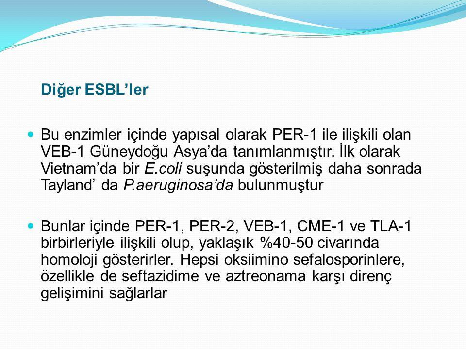 Diğer ESBL'ler Bu enzimler içinde yapısal olarak PER-1 ile ilişkili olan VEB-1 Güneydoğu Asya'da tanımlanmıştır. İlk olarak Vietnam'da bir E.coli suşu