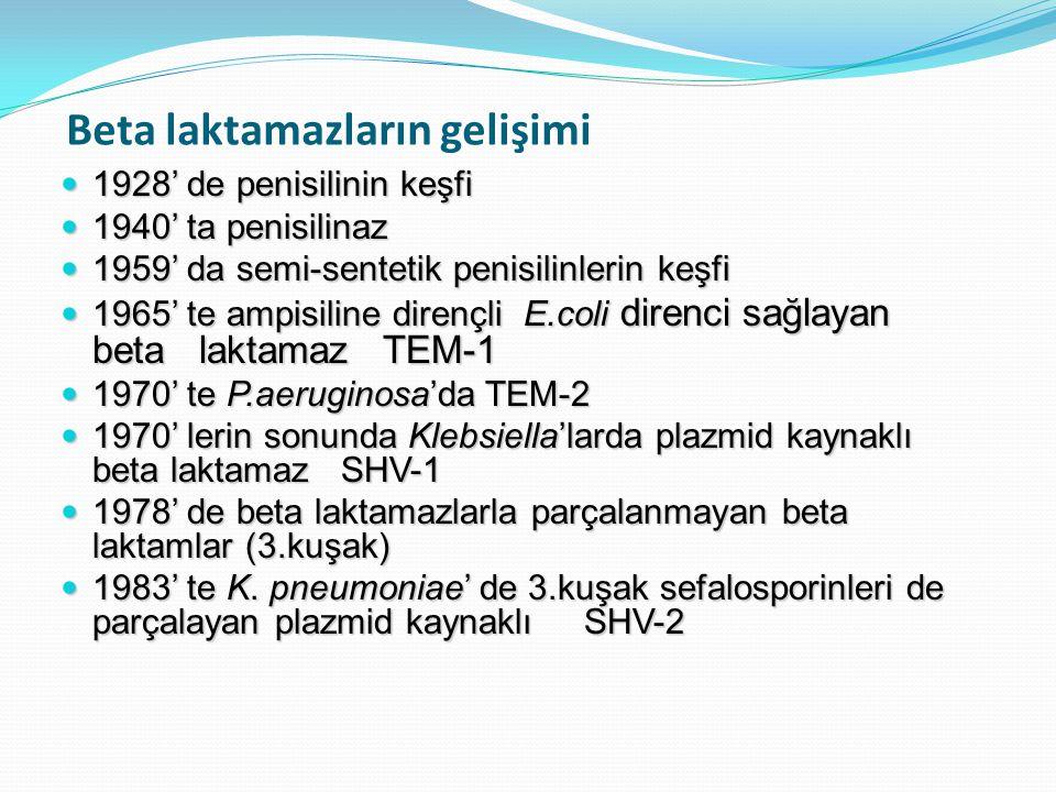 PER tipi enzimler: Bu enzimlerden PER-1 ülkemizde önce S.typhimurium, takiben P.aeruginosa ve A.baumannii izolatlarında tanımlanmıştır Yapılan epidemiyolojik çalışmalarda P.aeruginosa izolatlarının %10'u, A.baumannii izolatlarının %40'ı bu enzimi taşıyarak seftazidime direnç göstermektedir Bu bakterilerle nozokomiyal infeksiyon geliştiren hastalarda, bakterinin PER-1 enzimini taşıyor olması mortalite açısından istatistiksel olarak anlamlı ölçüde belirleyici olarak saptanmıştır