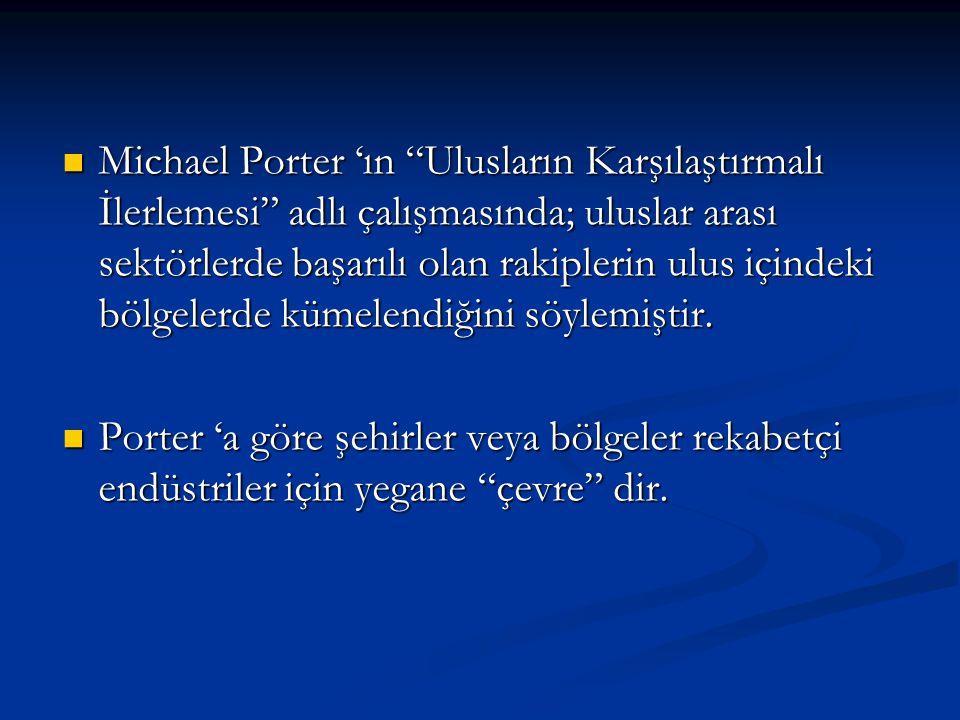 Michael Porter 'ın Ulusların Karşılaştırmalı İlerlemesi adlı çalışmasında; uluslar arası sektörlerde başarılı olan rakiplerin ulus içindeki bölgelerde kümelendiğini söylemiştir.
