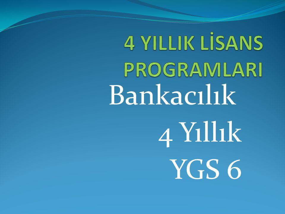 Bankacılık ve Finans 4 Yıllık YGS 6