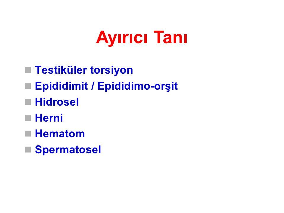 Ayırıcı Tanı Testiküler torsiyon Epididimit / Epididimo-orşit Hidrosel Herni Hematom Spermatosel