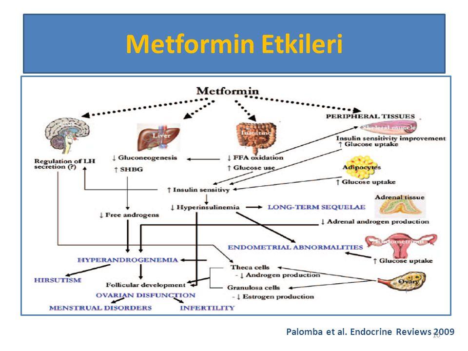 Palomba et al. Endocrine Reviews 2009 Metformin Etkileri 10