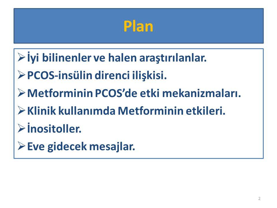 Plan  İyi bilinenler ve halen araştırılanlar.  PCOS-insülin direnci ilişkisi.  Metforminin PCOS'de etki mekanizmaları.  Klinik kullanımda Metformi