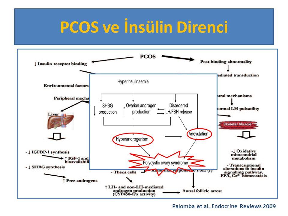 İnsülin Direnci İnfertilite İlişkisi HipofizLH pulsatil salınımını bozar.