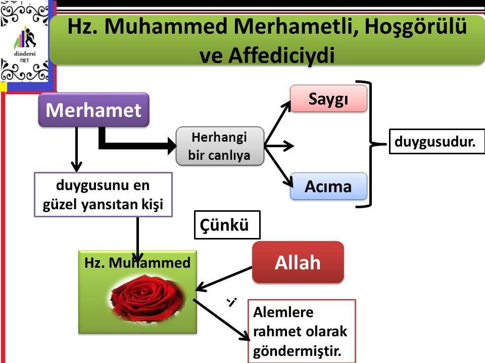 Hz.Muhammed Hz. Muhammed Hz.
