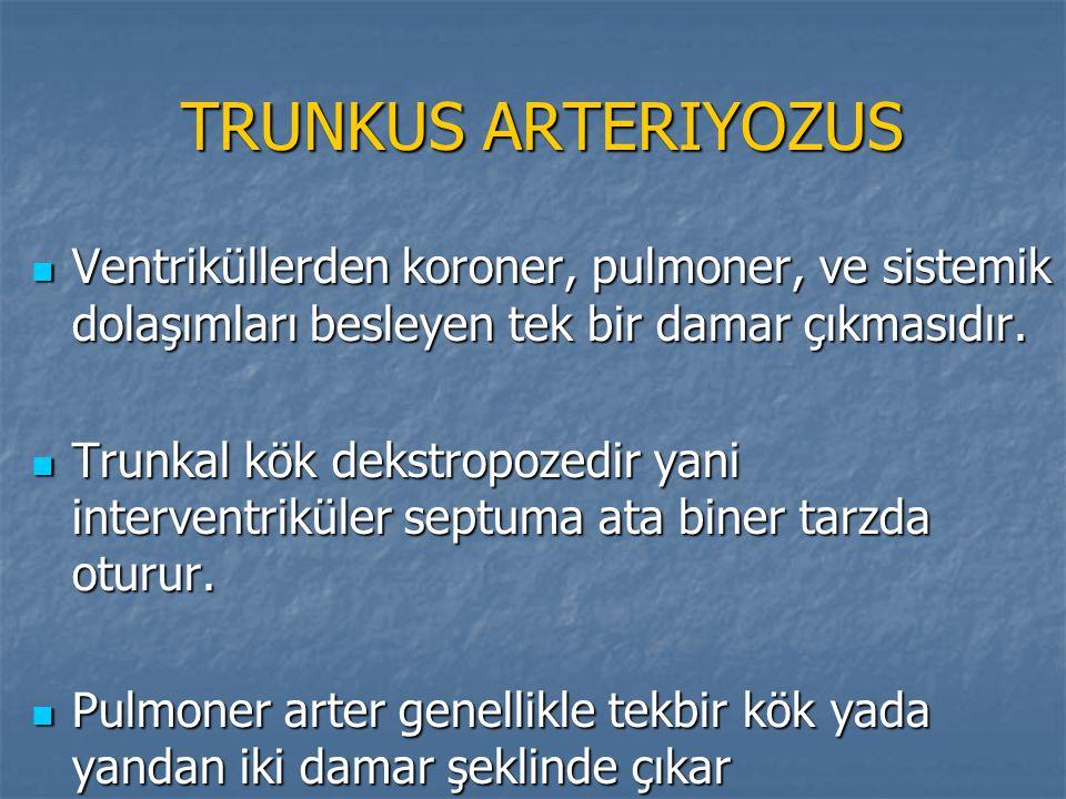 TRUNKUS ARTERIYOZUS TRUNKUS ARTERIYOZUS Ventriküllerden koroner, pulmoner, ve sistemik dolaşımları besleyen tek bir damar çıkmasıdır. Ventriküllerden