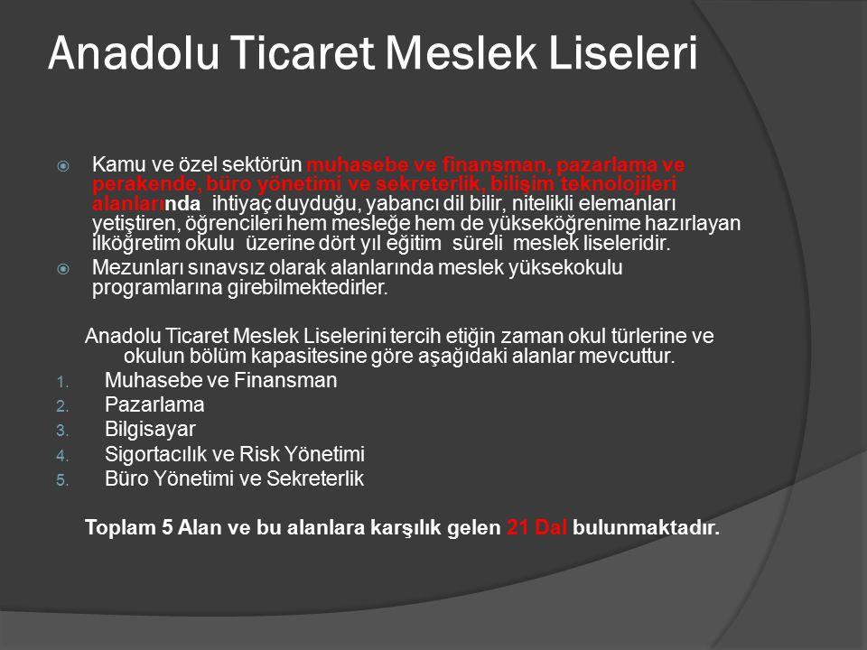 Anadolu Ticaret Meslek Liseleri  Kamu ve özel sektörün muhasebe ve finansman, pazarlama ve perakende, büro yönetimi ve sekreterlik, bilişim teknoloji