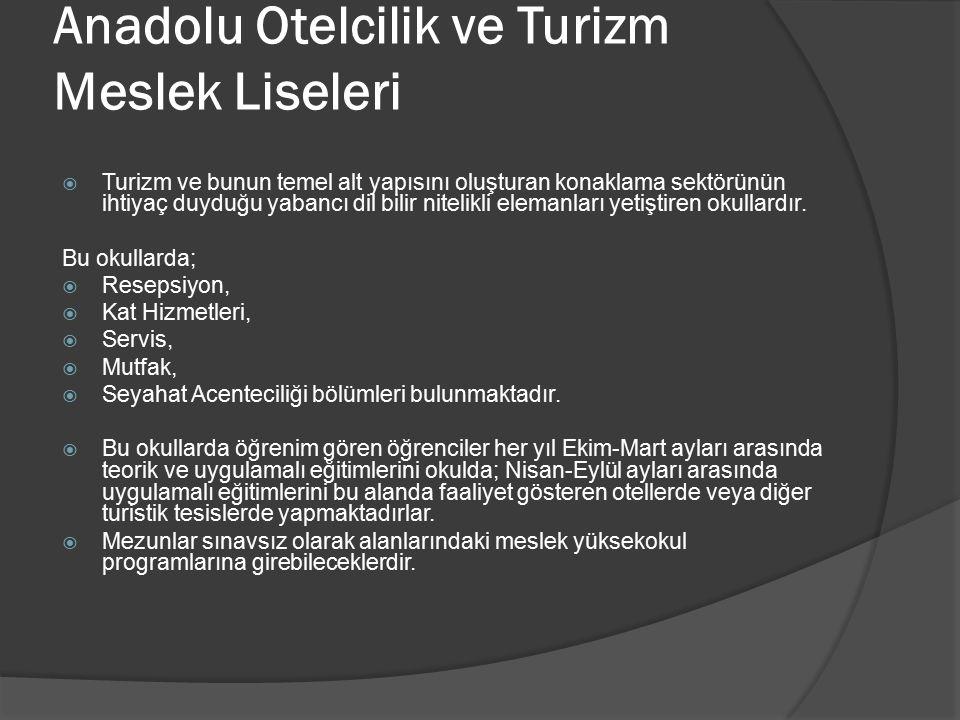 Anadolu Otelcilik ve Turizm Meslek Liseleri  Turizm ve bunun temel alt yapısını oluşturan konaklama sektörünün ihtiyaç duyduğu yabancı dil bilir nite
