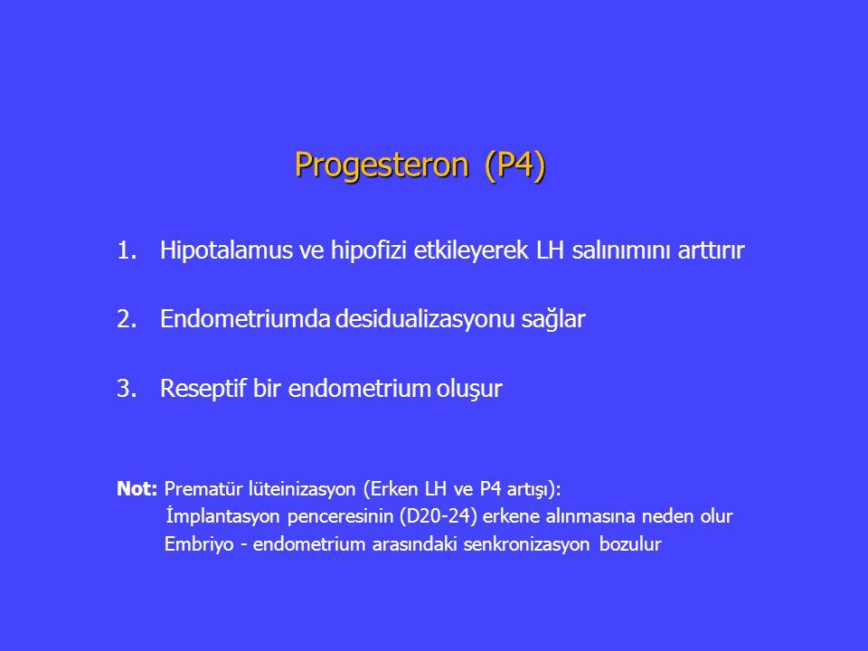 Progesteron (P4) 1. 1.Hipotalamus ve hipofizi etkileyerek LH salınımını arttırır 2. 2.Endometriumda desidualizasyonu sağlar 3. 3.Reseptif bir endometr